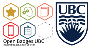 Open Badge Implementation – Perspectives from the External Badging Community